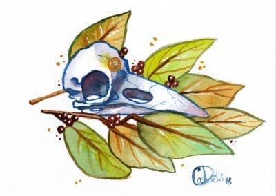 apollo watercolor painting